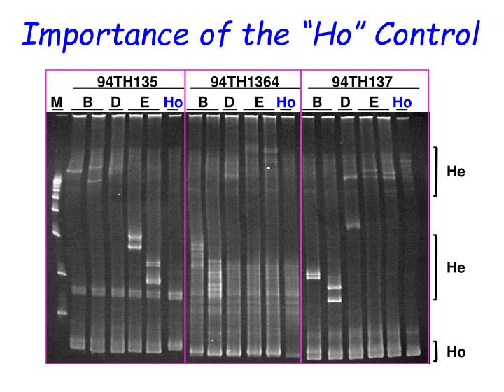 """Importance of the """"Ho"""" Control"""