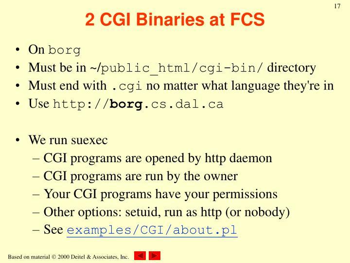 2 CGI Binaries at FCS