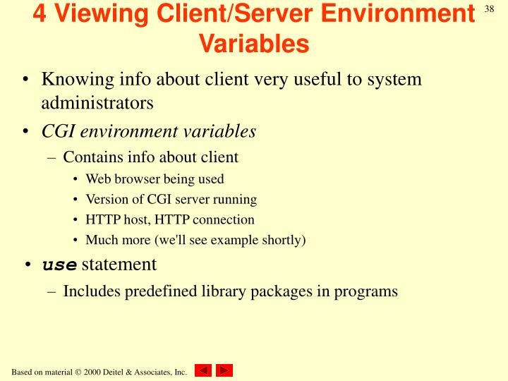 4 Viewing Client/Server Environment Variables