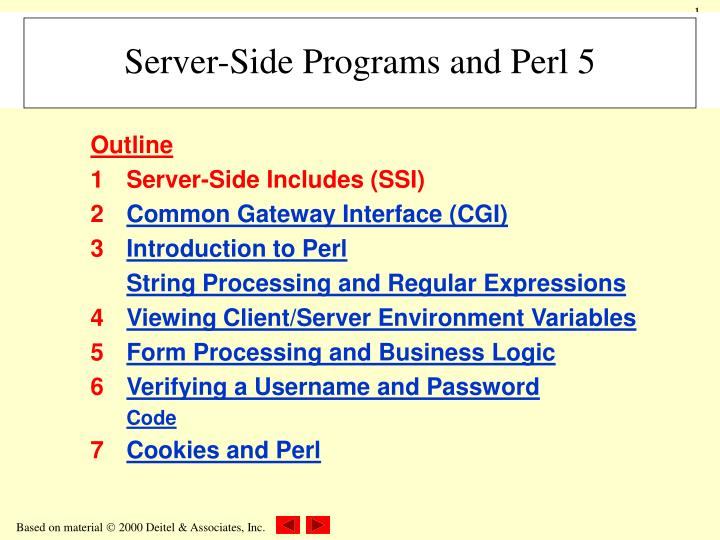 Server side programs and perl 5