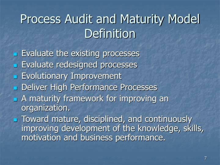 Process Audit and Maturity Model Definition