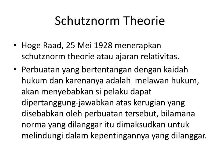 Schutznorm Theorie