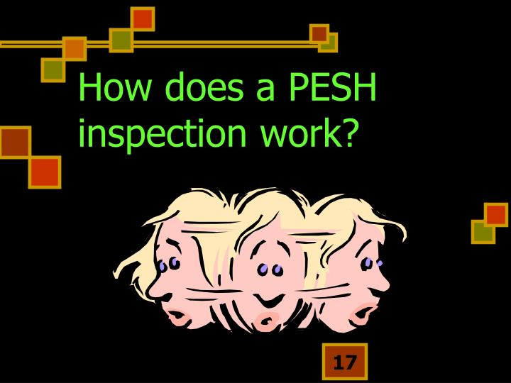 How does a PESH inspection work?