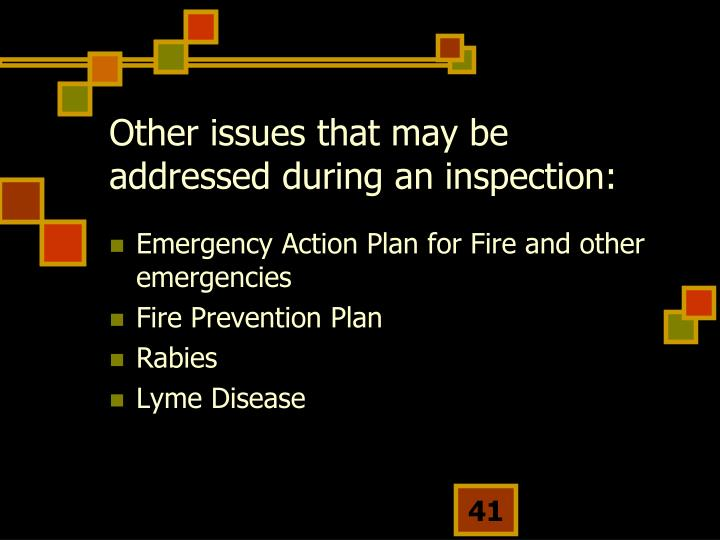 Other issues that may be addressed during an inspection:
