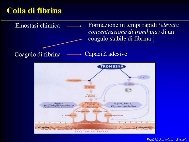 Colla di fibrina