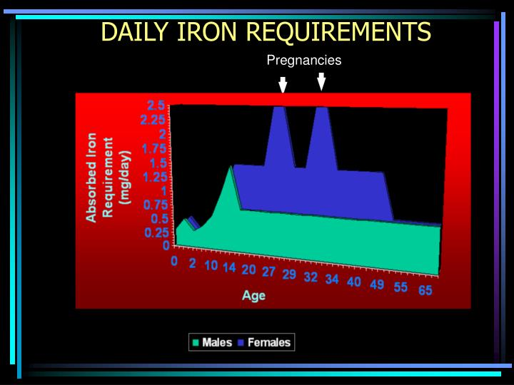 DAILY IRON REQUIREMENTS