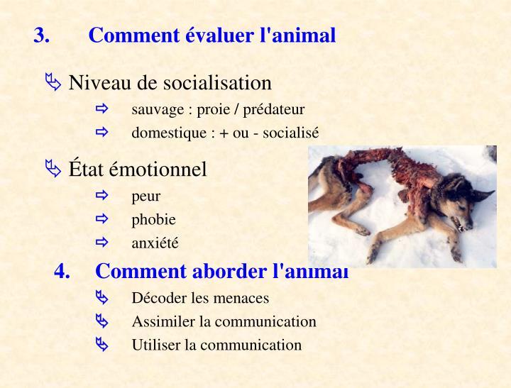 3. Comment évaluer l'animal