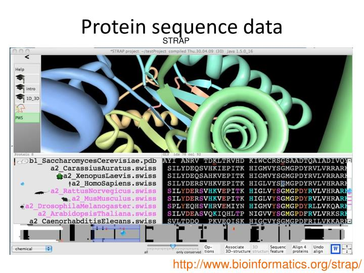 Protein sequence data
