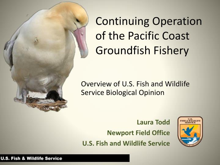 continuing operation of the pacific coast groundfish fishery n.