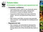 future risks 2 consumer confidence and reputational risk