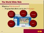 the world wide web1