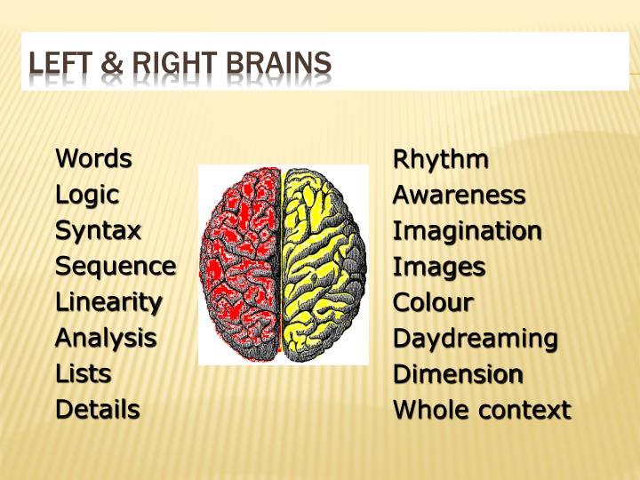 Left & right brains