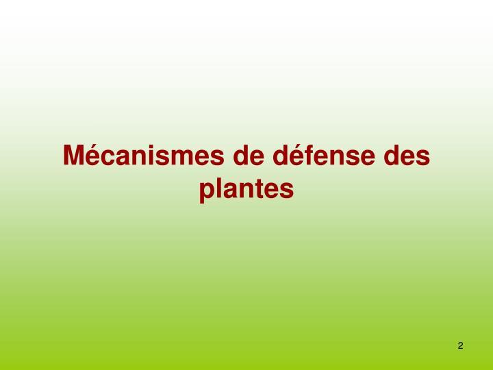 M canismes de d fense des plantes