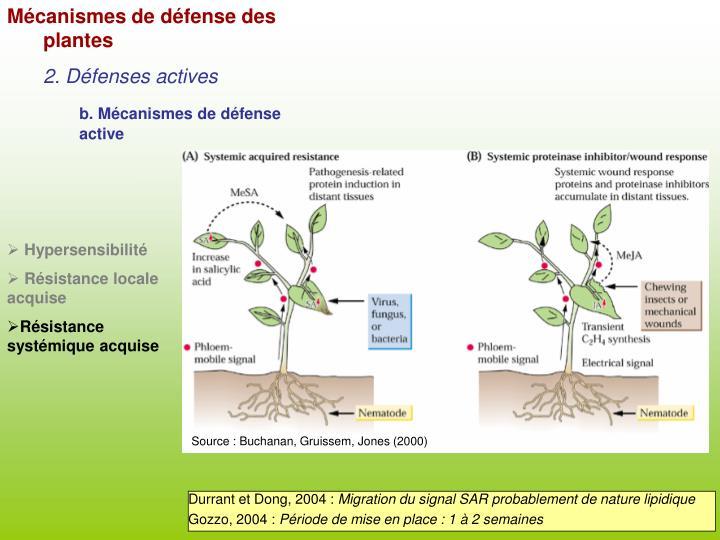 Mécanismes de défense des plantes