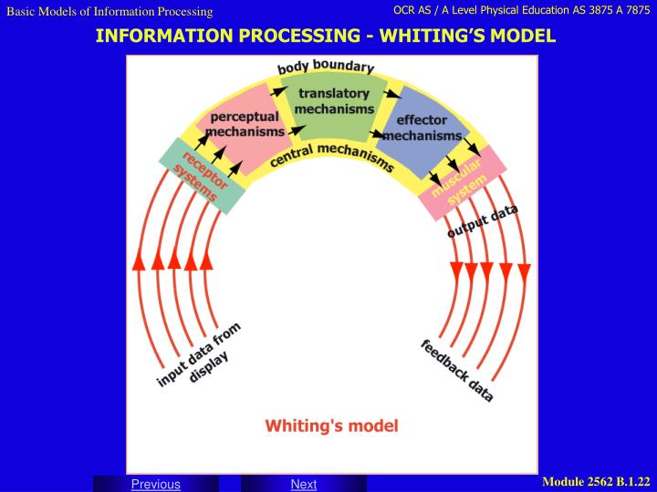 Basic Models of Information Processing