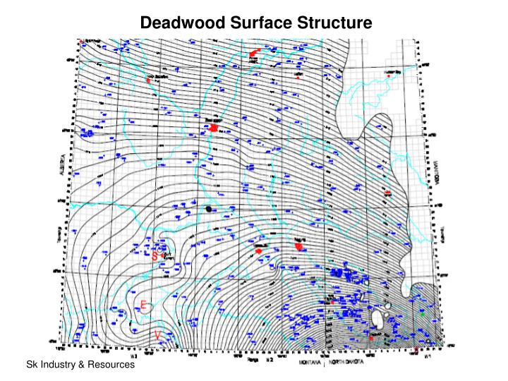 Deadwood Surface Structure