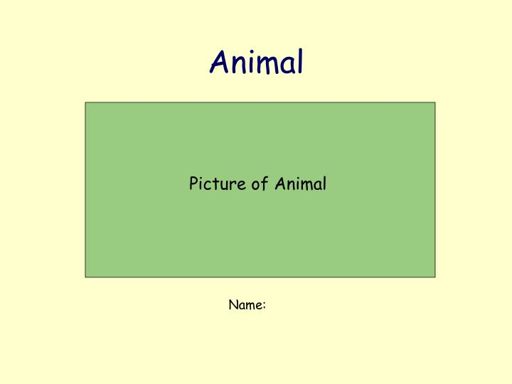 Picture of Animal