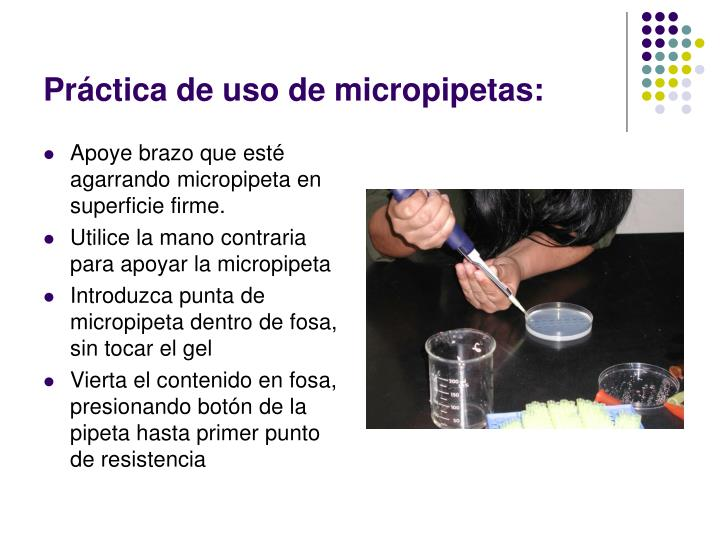 Práctica de uso de micropipetas: