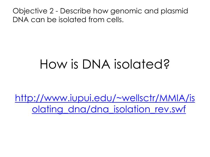 Objective 2 - Describe how genomic and plasmid DNA can be isolated from cells.