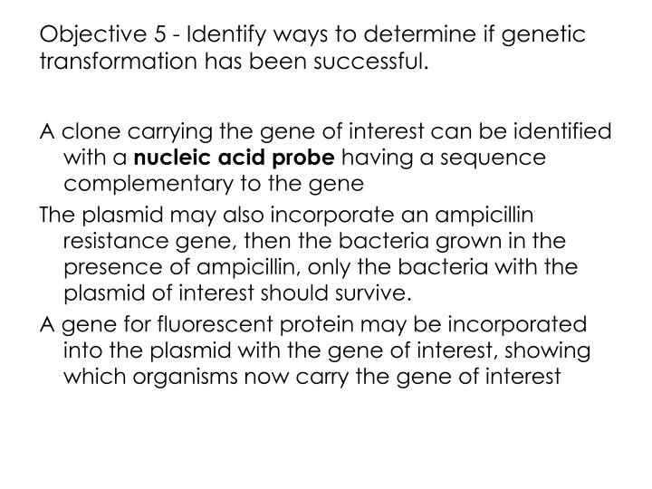 Objective 5 - Identify ways to determine if genetic transformation has been successful.