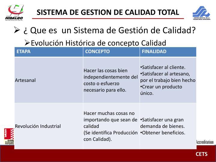 Sistema de gestion de calidad total1