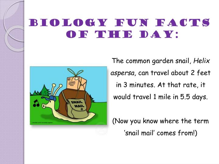 Biology fun facts of the day: