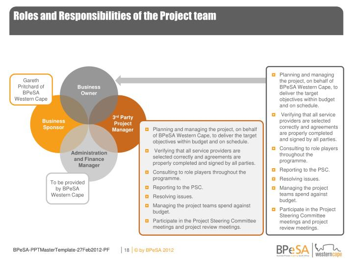 Roles and Responsibilities of the Project team