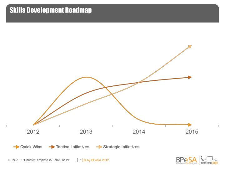 Skills Development Roadmap
