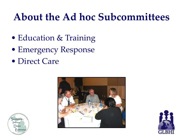 About the Ad hoc Subcommittees