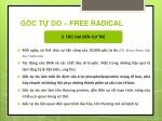 g c t do free radical2