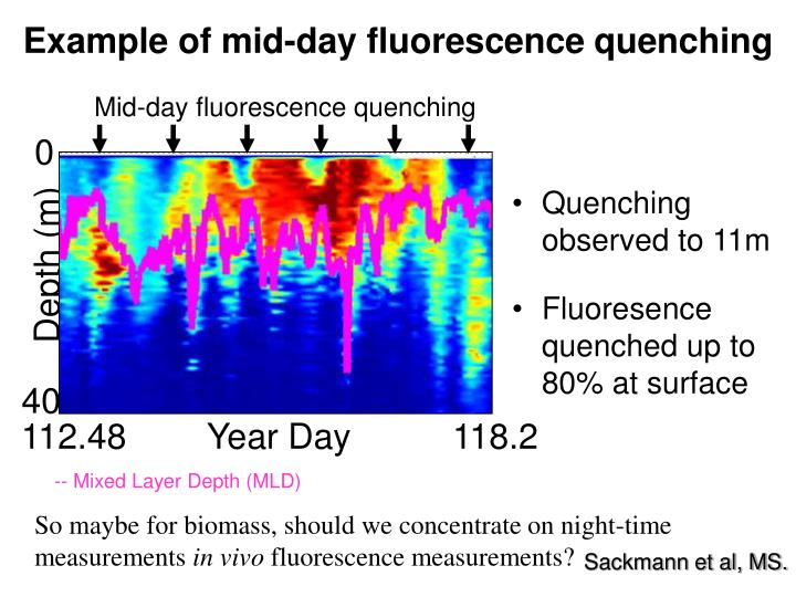 Mid-day fluorescence quenching