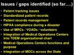 issues gaps identified so far1