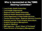 who is represented on the tdms steering committee