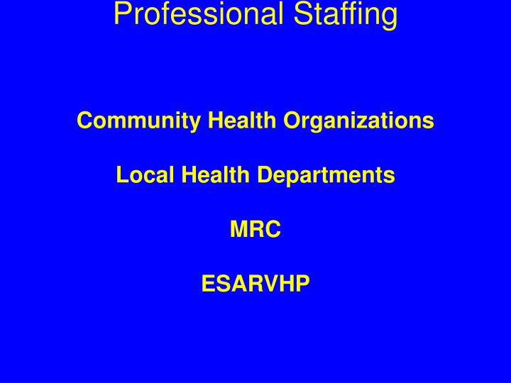 Professional Staffing