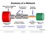 anatomy of a network