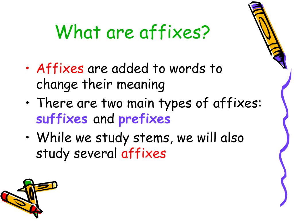 PPT - Vocabulary Study: Stems and Affixes PowerPoint ...