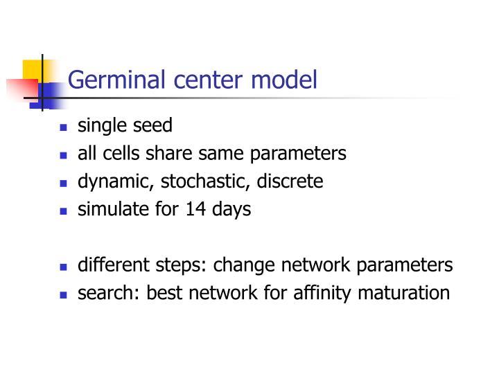 Germinal center model