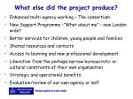 what else did the project produce