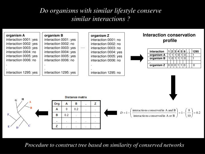 Interaction conservation
