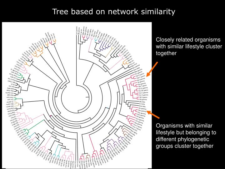 Distance tree based on interactions present