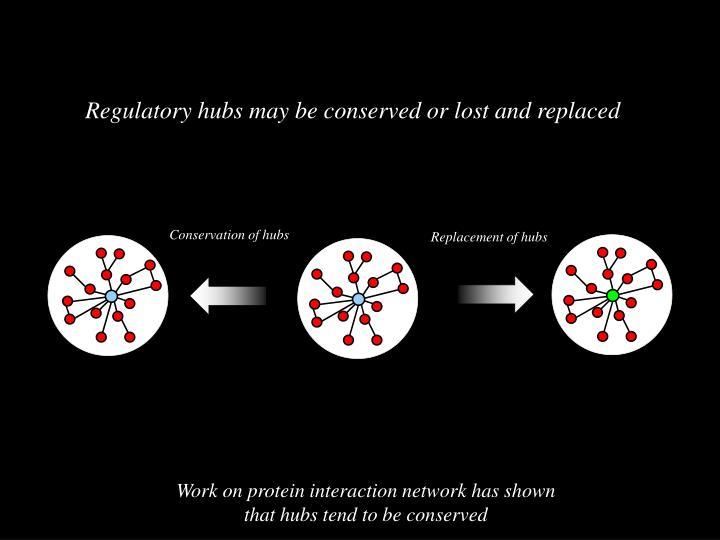 Conservation of hubs