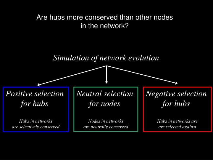 Are hubs more conserved than other nodes