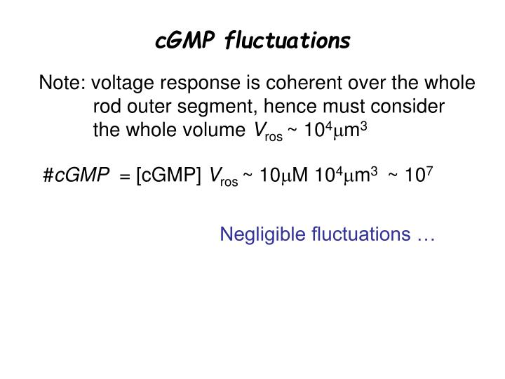 cGMP fluctuations