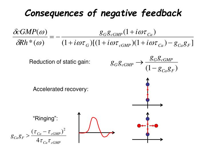 Consequences of negative feedback