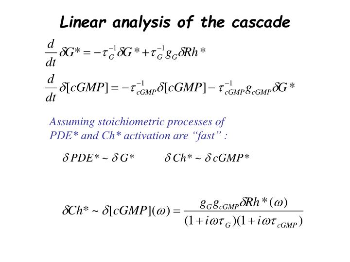Linear analysis of the cascade
