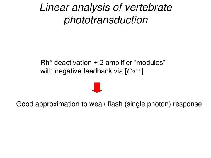 Linear analysis of vertebrate phototransduction