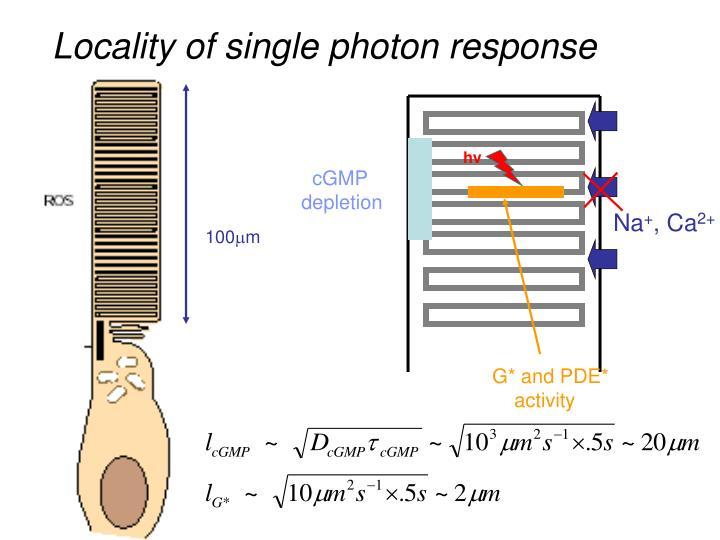 Locality of single photon response