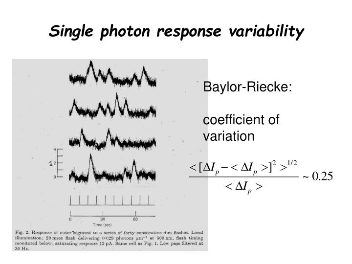 Single photon response variability