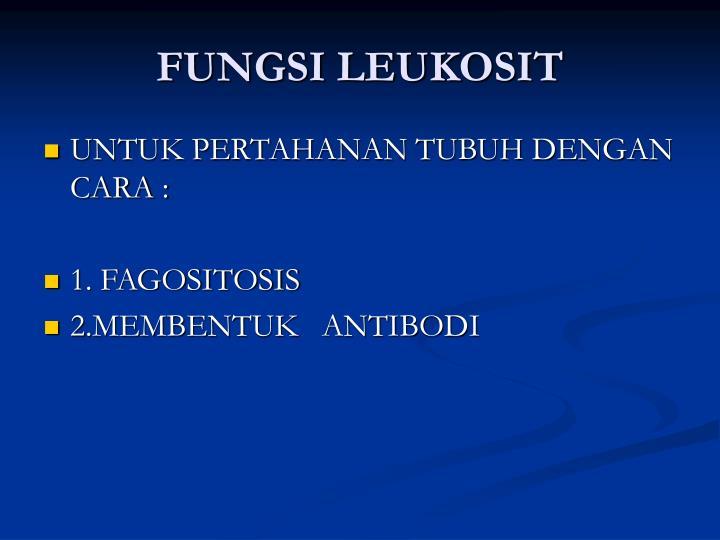 FUNGSI LEUKOSIT