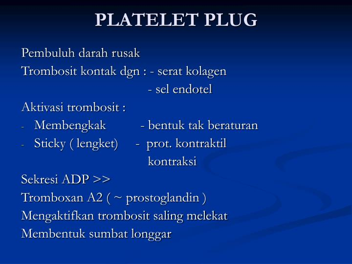 PLATELET PLUG